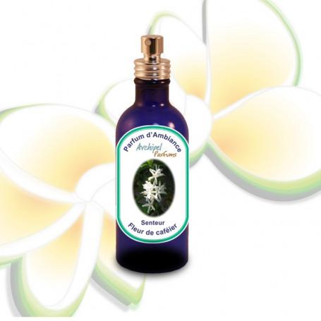 Parfum d'ambiance Fleur de café 100ml