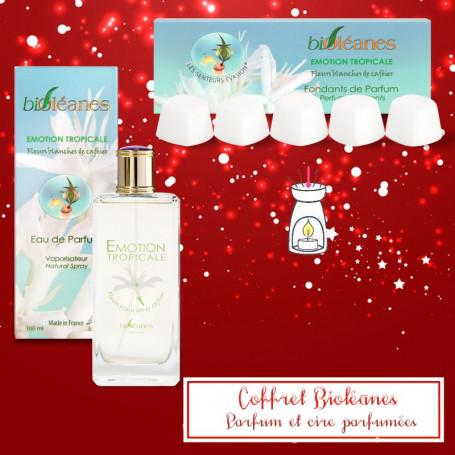 Coffrets biOléanes Parfums et Parfums solides
